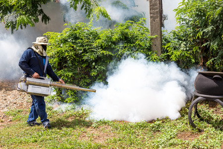 fumigation: Fumigate mosquito at home for protection mosquito