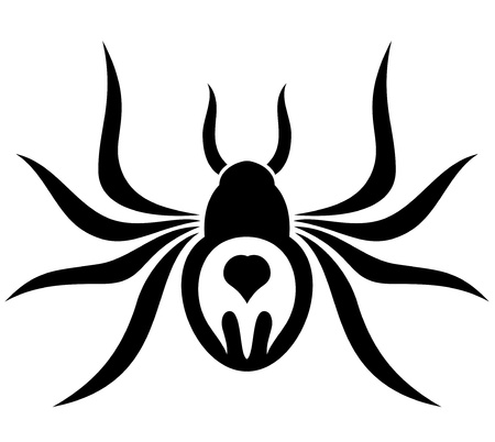 Vector  Tattoo  Spider   Vector
