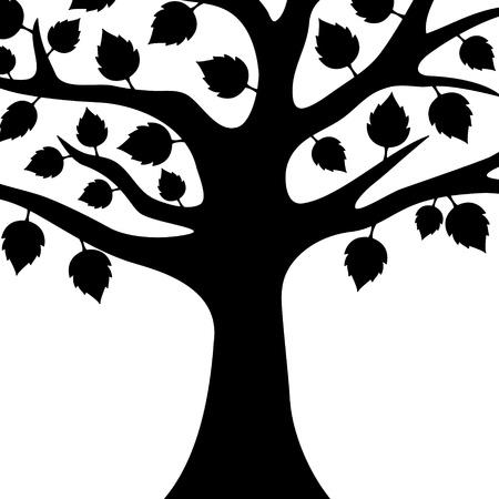 Vector  Tree isolated   Vector
