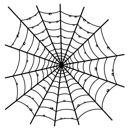 spinnennetz: Spinnwebe Illustration