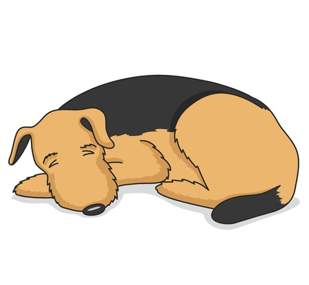 dog sleeping: illustration  Dog
