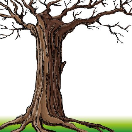 genealogical: �rbol