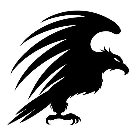 Eagle  Ilustrace
