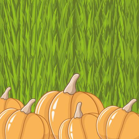 Pumpkins. Vector