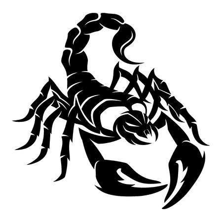 Scorpion. Vector