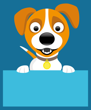 jack russell: Jack russell terrier.
