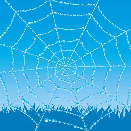 spinnennetz: Cobweb. Illustration