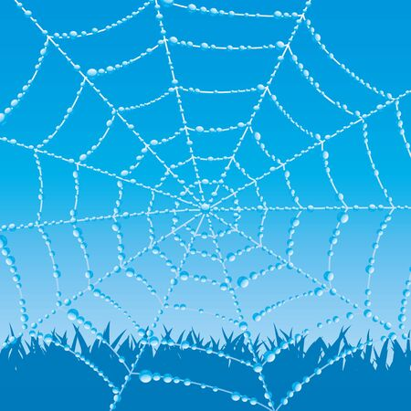Cobweb. Illustration