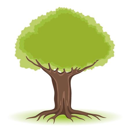 un arbre: Arbre.