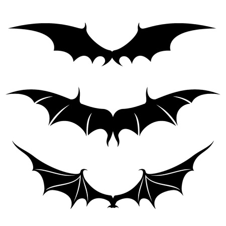 bat animal: Wings. Illustration