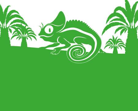 chameleon: Chameleon.