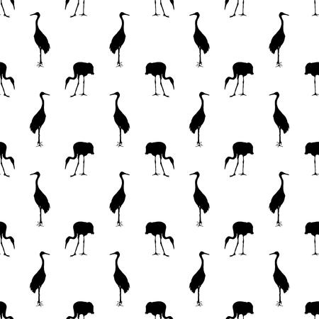crane bird: Crane bird on a white background. Illustration