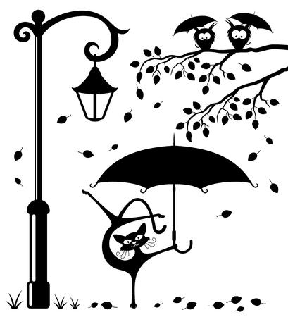 autumn cat: Funny cat with an umbrella.