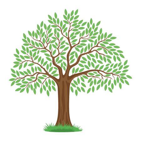 tree: Tree. Illustration