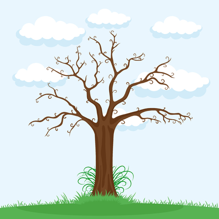 Tree without leaves.