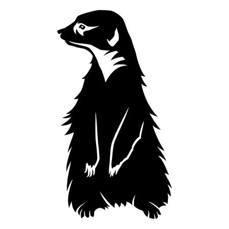 Sign of a black meerkat.