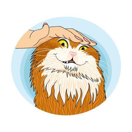 Cute cat round sticker on a white background.