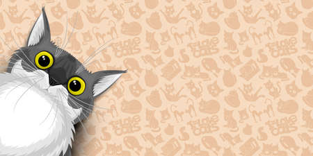 Illustration banner with cute gray cat on beige background. Иллюстрация