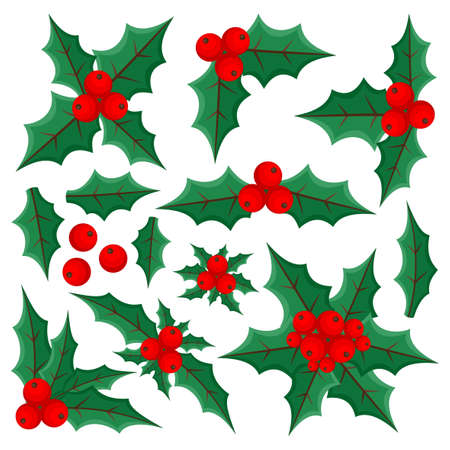 Set with holly leaves and berries on white background.