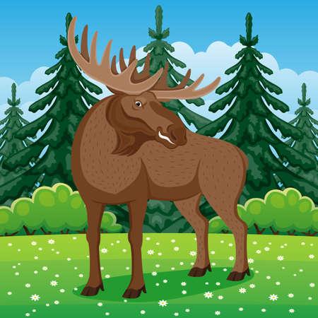 Nature illustration with moose on grass in coniferous forest. Ilustração