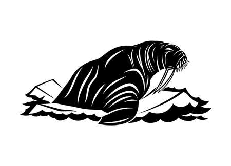 Walrus icon on ice floes on white background.