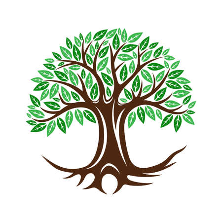 Round tree icon with leaves and roots on white