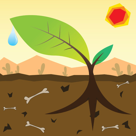 dewdrop: The green big root sprout with dewdrop among the dead desert  Illustration