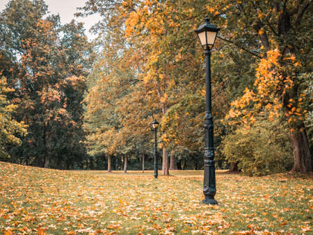 Beautiful Autumn Landscape With Old Fashion Lamp, Vintage Street Light, Falling Leaves, and Yellow Trees. Colorful Foliage in the Park