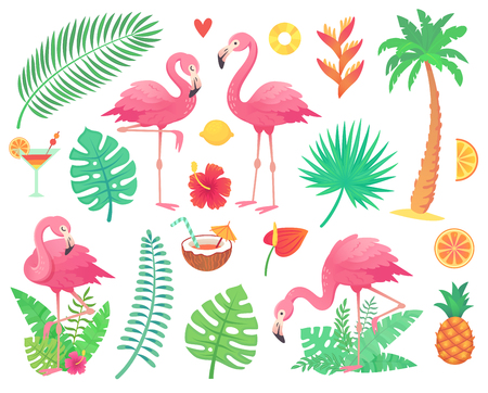 Cartoon cute pink flamingo and tropical plants. Beach palm, green african plant monstera leafs, floral rainforest flower, tropic palms leaf and rosy flamingos and summer stuff vector illustration Stock Photo