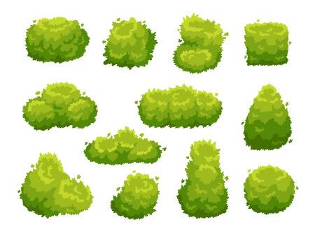 Tuin struik. Groene tuin vegetatie struiken pictogram. Cartoon struiken voor buiten versieren landschapspark hedge kleurrijke vector geïsoleerde sjabloon teken set