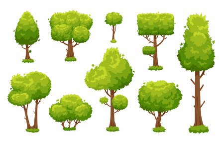 Cartoon green tree. Environmental forest or park trees cute landscape wood plant bushes isolated for garden hedge vector illustration background sign set