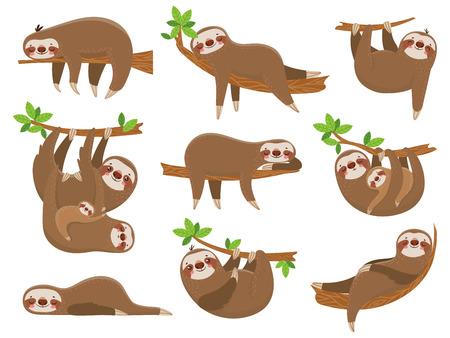 Familia de perezosos de dibujos animados. Adorable animal soñoliento perezoso en la selva tropical diferente para dormir perezoso. Divertidos animales lindos marrones feliz sueño en los árboles de los bosques tropicales vector conjunto aislado de iconos