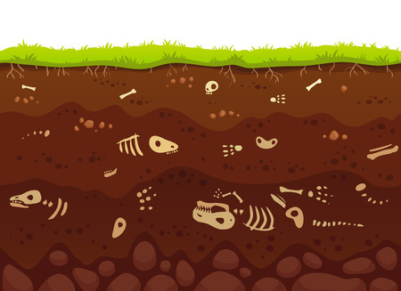 Archeology bones in soil layers. Buried fossil animals, dinosaur skeleton bone in dirt and underground clay layer or death lizard in dirty earth, geological vector cartoon illustration Stok Fotoğraf - 110800566