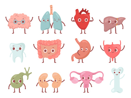 Healthy biological organ. Smiling lung, happy heart and funny brain. Smile stomach, uterus organs bone and tooth. Biology medicine character cartoon isolated character vector icons set