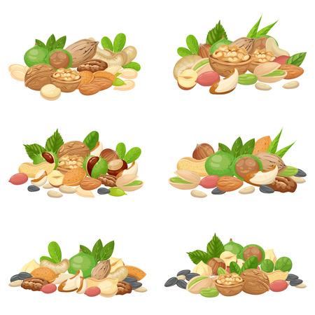 Nüsse Haufen. Fruchtkerne, getrocknete Mandeln und Kochsamen. Zellulosenahrungsmittel Macadamia, Walnuss und Getreidenüsse. Landwirtschaft Diät Aussaat Mischung Cartoon isolierte Vektor-Icons gesetzt Vektorgrafik