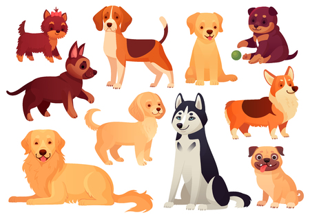Cartoon puppy and dog. Happy puppies with smiling muzzle, loyal dogs and friendly dog. Husky, corgi and pug doggy pedigreed expression character isolated vector icons set