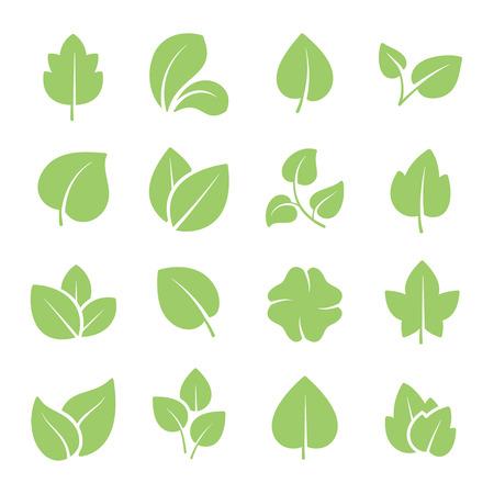 녹색 나무 잎. 친환경적이고 자연적인 녹색 어린 식물들은 그림문자와 잎이나 숲 가지 잎을 가지고 있습니다. 자연 녹지 에코 정원 식물 벡터 격리 아이콘 세트