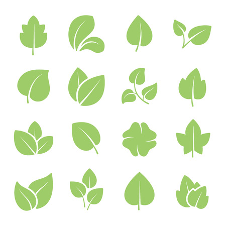 Green tree leaves. Ecology friendly, natural greens young plants pictograms and leaf or forest branch leaves. Nature greenery eco garden plant vector isolated icons set