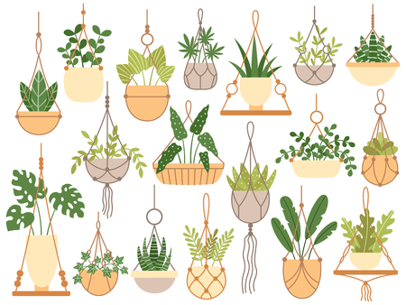 Plants in hanging pots. Decorative macrame handmade hangers for flower pot, hang indoor plants. Planting flowers, plantar pots garden decoration flat isolated vector icons set