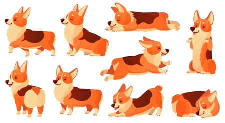 Cartoon dog character. Sleeping corgi dogs poses,  dog fitness sport exercise and relaxing pet yoga pose. Corgi puppy doggy sitting or domestic pets emotion isolated vector icons set Illustration