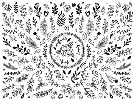 Hand drawn flowers ornament. Ornamental sketch flourish flower. Vintage floral ornaments or plant leaf decor painting. Laurel wreath leaves isolated vector elements set Vector Illustratie