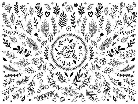 Ornamento di fiori disegnati a mano. Fiore di fioritura di schizzo ornamentale. Ornamenti floreali vintage o pittura decorativa con foglie di piante. La corona di alloro lascia l'insieme di elementi di vettore isolato Vettoriali