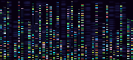 Genomic analysis visualization. Dna genomes sequencing, deoxyribonucleic acid genetic map and genome sequence analyse. Bioinformatics forensics data or dna radiographic testing vector concept Illustration
