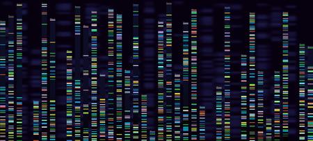 Visualización del análisis genómico. Secuenciación de genomas de ADN, mapa genético de ácido desoxirribonucleico y análisis de secuencia de genoma. Datos forenses de bioinformática o concepto de vector de pruebas radiográficas de adn Ilustración de vector