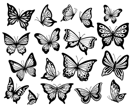Drawing butterflies. Stencil butterfly, moth wings and flying insects. Butterflies tattoo sketch, fly insect black hand drawn engraving. Isolated vector illustration icons set Illustration
