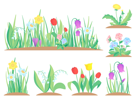 Spring garden flowers. Early flower, colorful gardens plants and flowering plant gardening. Flowers gardener blossom landscape. Flat vector isolated icons illustration set