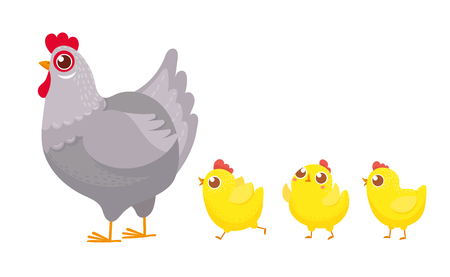 Chicks following chicken. Spring easter chickens, hatched chick and hen family. Easter chicken mascot bird, mother chick and small hens cartoon vector illustration 向量圖像