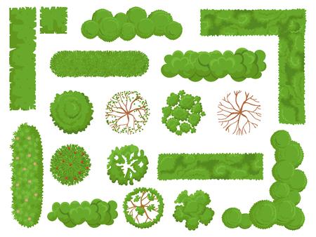 Vista superior de árboles y arbustos. Los elementos del mapa del árbol del bosque, del arbusto del parque verde y de la planta miran desde arriba el conjunto de vectores aislados