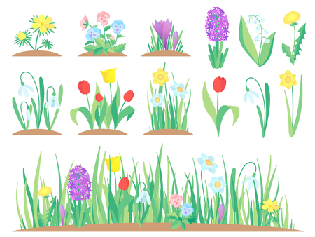 Spring flowers. Garden tulip flower, early floral plants and tulips plant gardening. Herbal green flowers bloom, decorative tulip and hyacinths. Isolated vector symbols set