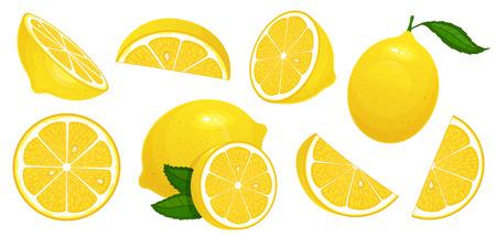 レモンスライス。新鮮な柑橘類、半分スライスレモンとみじん切りレモン。レモンのフルーツスライスとレモネードジュースやビタミンcの皮をカットします。分離された漫画のベクトルイラストのアイコンセット ベクターイラストレーション